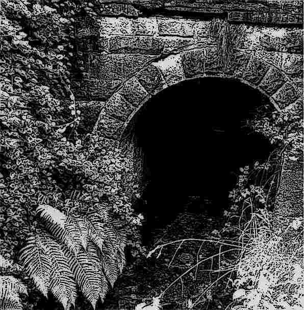 Tannahills-hole (1)